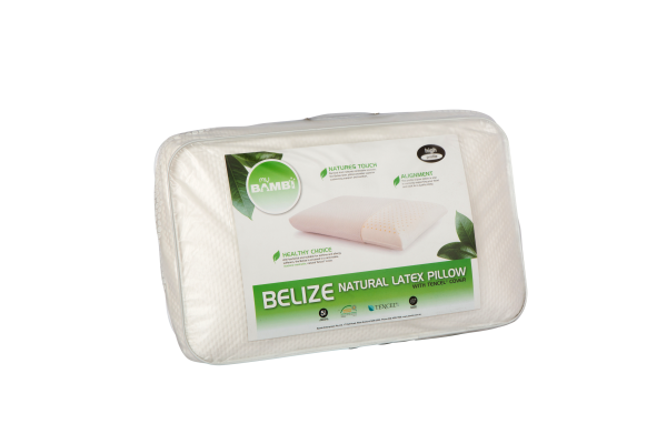 Belize Natural Latex High Profile Pillow with Tencel Cover